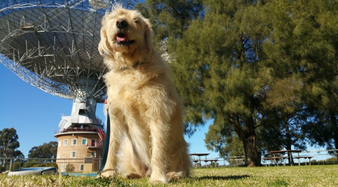 Parkes and the Dish